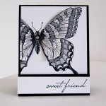 Stampin Up Swallowtail