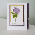 Stampin Up Fabulous Florets stamp set