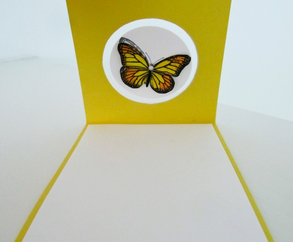 Stampin Up Best of Butterflies