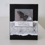 Stampin Up Best of Butterflies Stamp Set