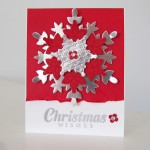 Stampin Up Festive Flurry Stamp Set