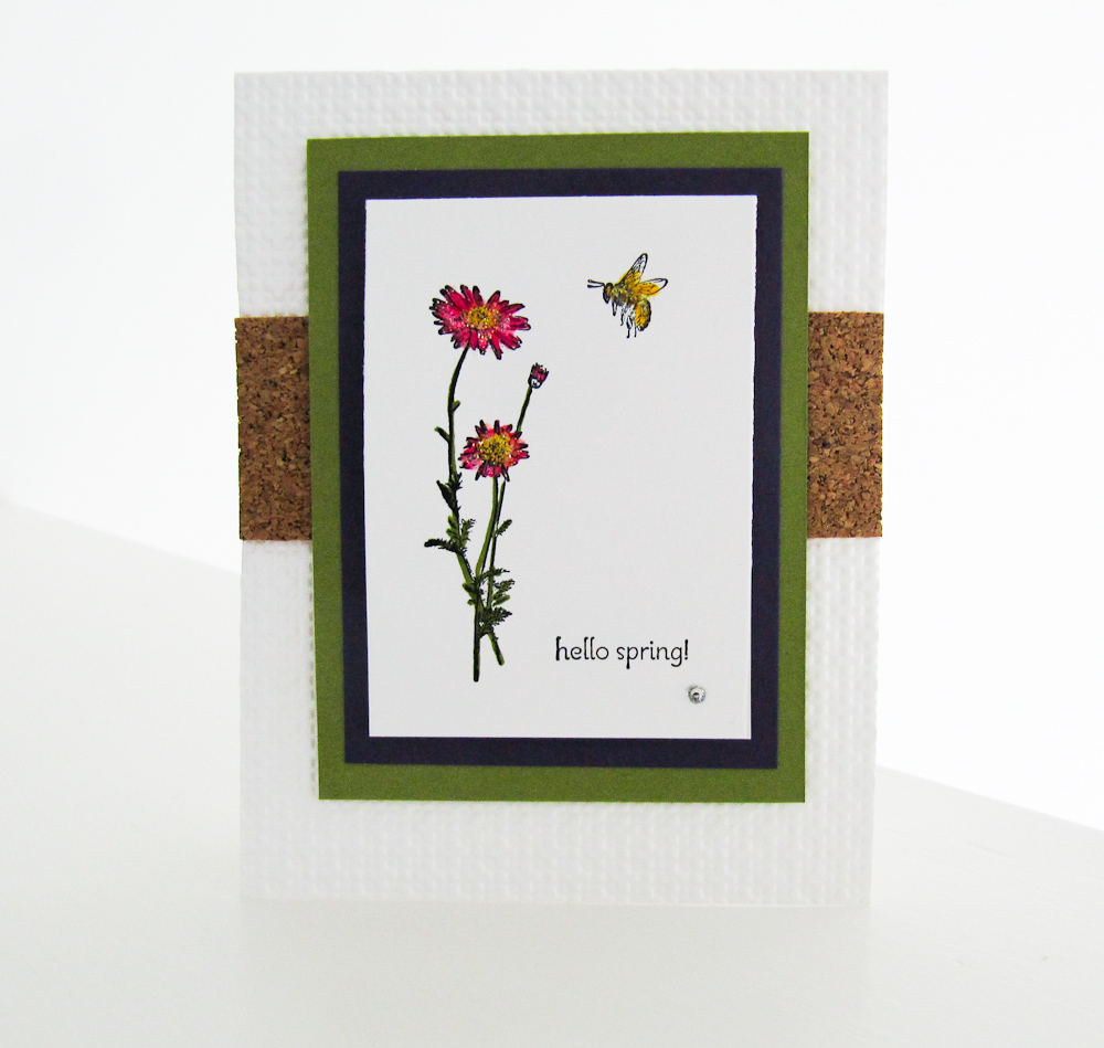 Stampin Up Springtime Hello STamp Set