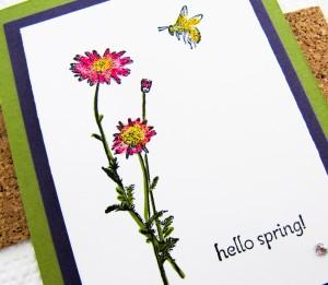 Springtime Hello-6
