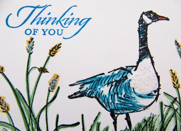 stampin up wetlands stamp set
