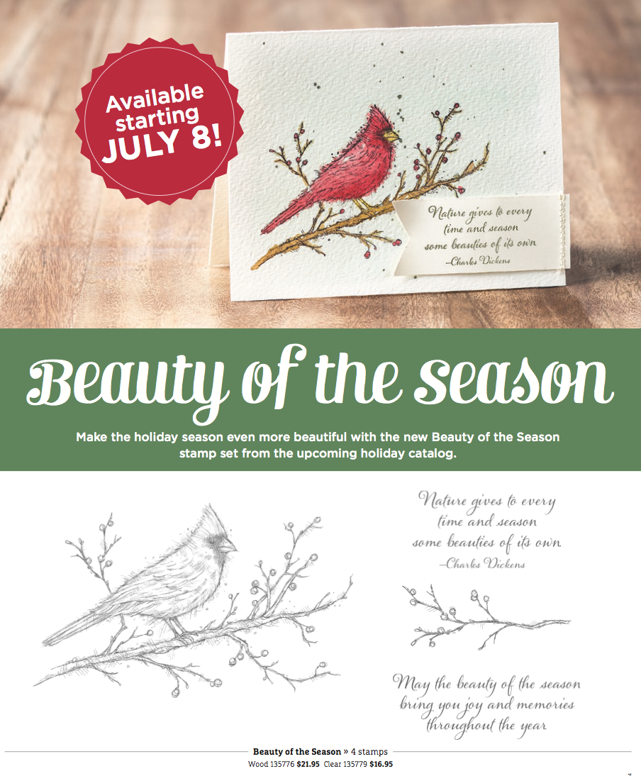 Stampin Up Beauty of the Season Stamp Set