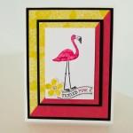 FlamingoLingo