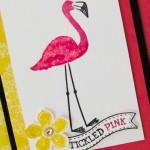FlamingoLingo-2