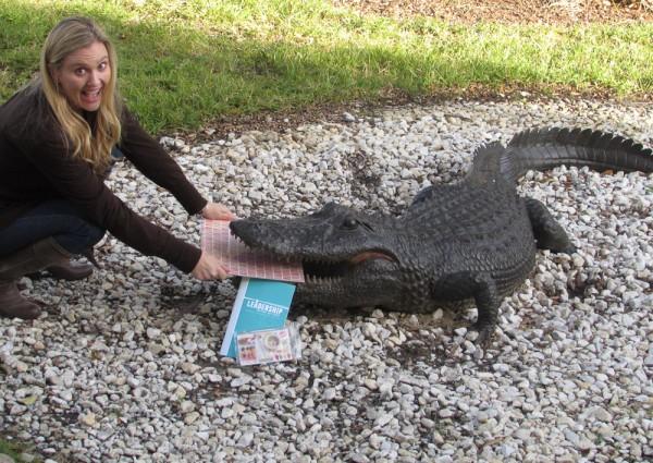AlligatorLR