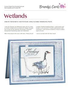 13G04-Wetlands-1
