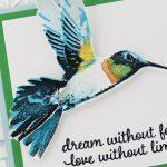 HummingbirdHR-3