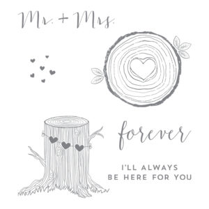 143814 Always And Forever - Clear
