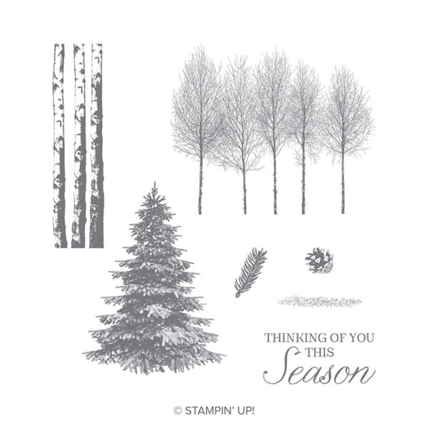 stampin up - winter woods bundle