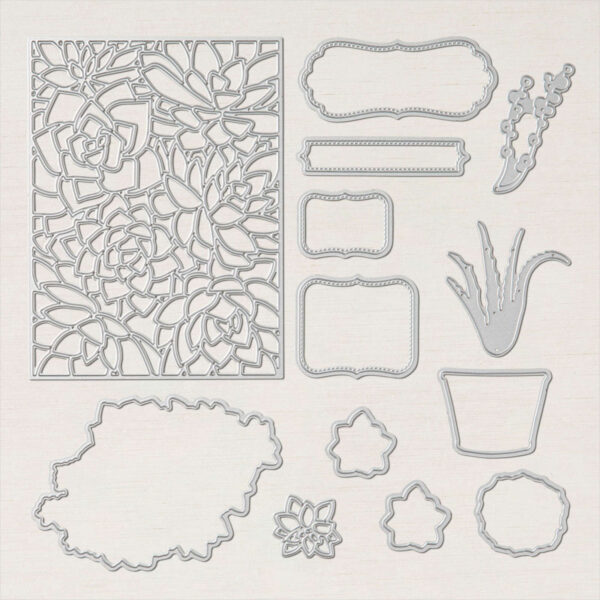 Potted Succulents Dies from Stampin Up - BrandysCards