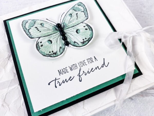 Butterfly Brilliance Bundle from Stampin Up