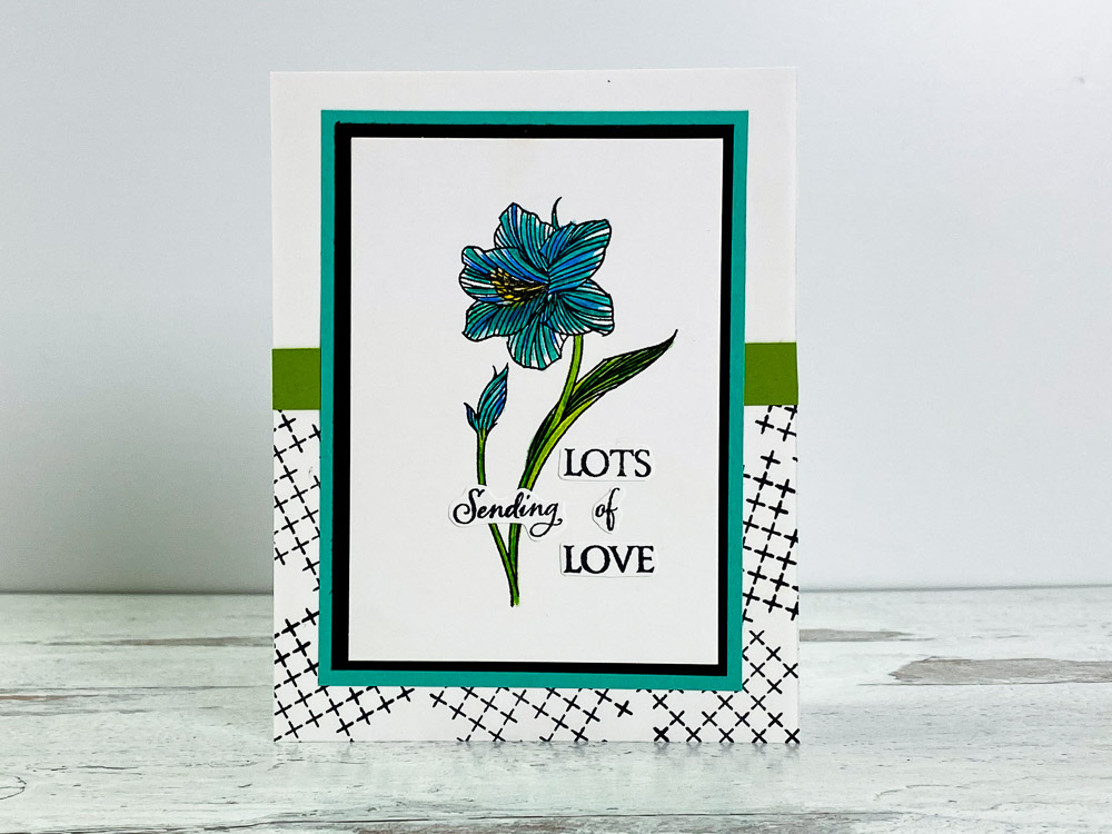 homemade-card-ideas-with-stampin-up-amaryllis-abloom-uses-watercolor-pencils